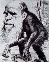 Газетная карикатура на Дарвина
