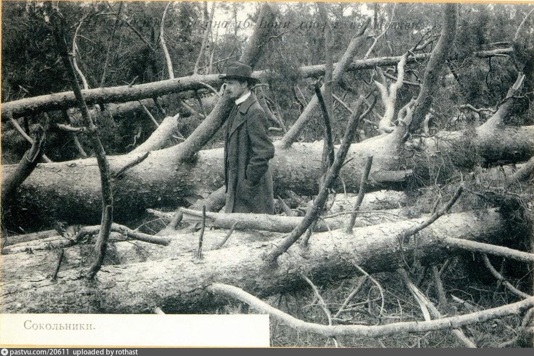 Последствия урагана 1904 г.