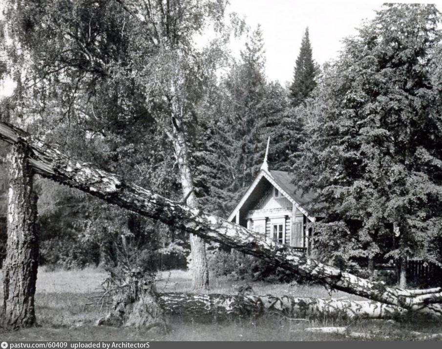 Последствия урагана 1904 г. в Москве