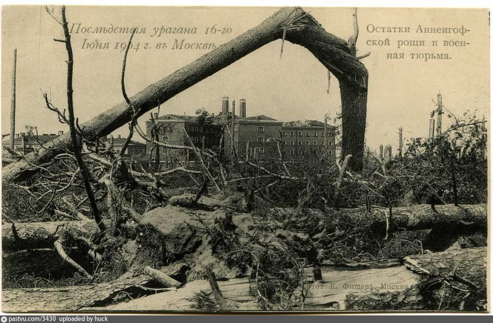 Последствия урагана в Москве, 1904 г. Экскурсия.